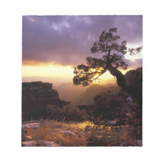 NA, USA, Arizona, Tucson, Sunset and lone Notepad