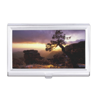 NA, USA, Arizona, Tucson, Sunset and lone Case For Business Cards