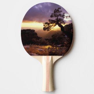 NA, USA, Arizona, Tucson, Sunset and lone Ping Pong Paddle
