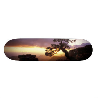 NA, USA, Arizona, Tucson, Sunset and lone Skateboard