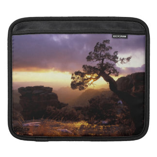 NA, USA, Arizona, Tucson, Sunset and lone Sleeve For iPads