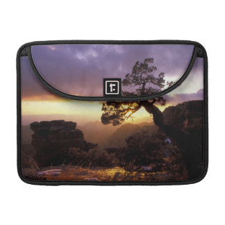 NA, USA, Arizona, Tucson, Sunset and lone Sleeve For MacBooks
