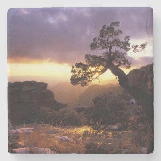 NA, USA, Arizona, Tucson, Sunset and lone Stone Coaster