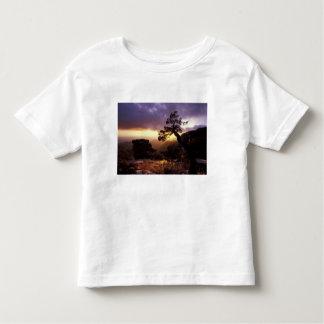 NA, USA, Arizona, Tucson, Sunset and lone Toddler T-shirt