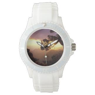NA, USA, Arizona, Tucson, Sunset and lone Wrist Watch