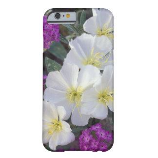 NA, USA, California, Anza Borrego Desert State Barely There iPhone 6 Case
