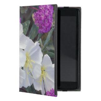 NA, USA, California, Anza Borrego Desert State iPad Mini Cases