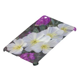 NA, USA, California, Anza Borrego Desert State iPad Mini Covers