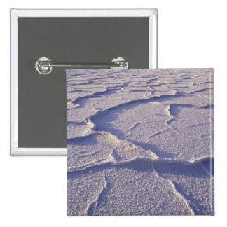 NA, USA, California. Death Valley National Button