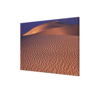NA, USA, California. Death Valley National Canvas Print