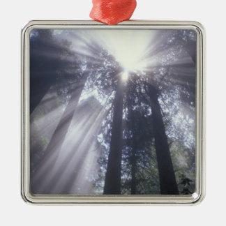 NA, USA, California. Del Norte Coast State 2 Metal Ornament