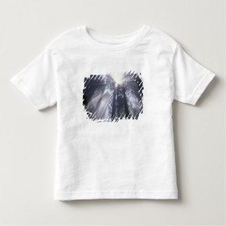 NA, USA, California. Del Norte Coast State 2 Shirt
