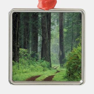 NA, USA, California. Del Norte Coast State Park. 3 Metal Ornament
