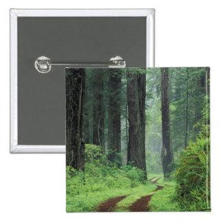 NA, USA, California. Del Norte Coast State Park. 3 Pinback Button