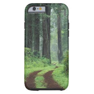 NA, USA, California. Del Norte Coast State Park. 3 Tough iPhone 6 Case