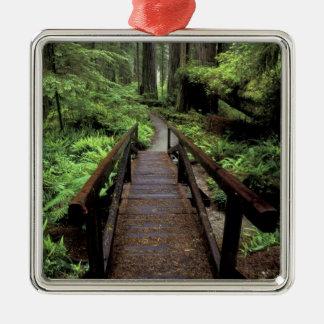 NA, USA, California, Jedidiah Smith Redwoods Metal Ornament