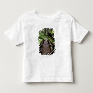 NA, USA, California, Jedidiah Smith Redwoods Toddler T-shirt