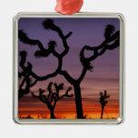 NA, USA, California. Joshua Tree National Metal Ornament