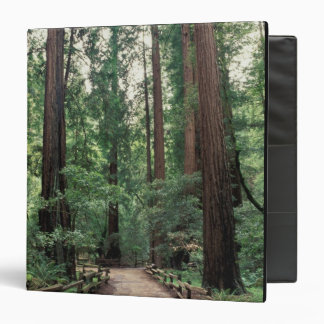 NA, USA, California, Marin County, Muir Woods Binder