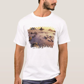 NA, USA, California, Northern California, T-Shirt