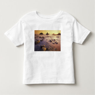 NA, USA, California, Northern California, Toddler T-shirt