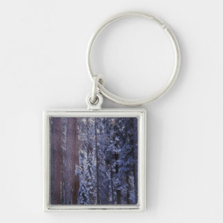 NA, USA, California. Sequoia National Park. 2 Keychain