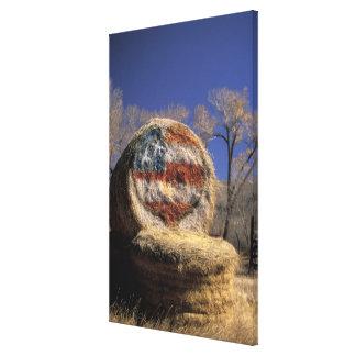 NA, USA, Colorado, Gunnison. Patriotic hay roll Canvas Print