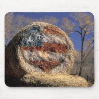 NA, USA, Colorado, Gunnison. Patriotic hay roll Mouse Pad