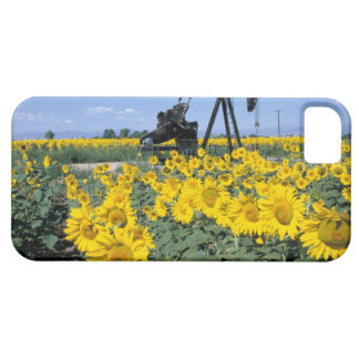 Na, USA, Colorado, Sunflowers, Oil Derrick iPhone SE/5/5s Case