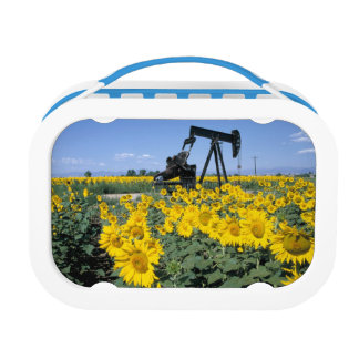 Na, USA, Colorado, Sunflowers, Oil Derrick Lunch Box