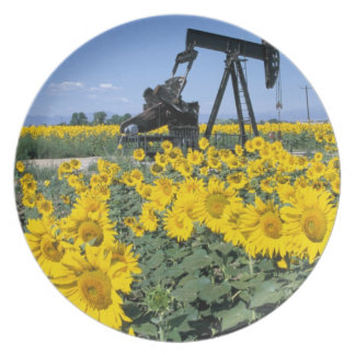 Na, USA, Colorado, Sunflowers, Oil Derrick Melamine Plate