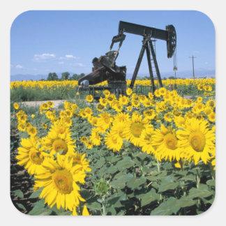 Na, USA, Colorado, Sunflowers, Oil Derrick Square Sticker
