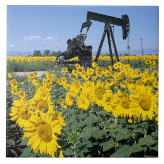 Na, USA, Colorado, Sunflowers, Oil Derrick Tile