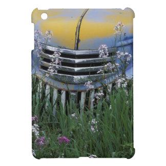 NA, USA, eastern Washington, Old truck with iPad Mini Cover