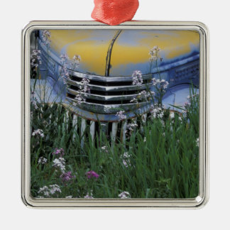 NA, USA, eastern Washington, Old truck with Metal Ornament