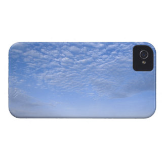 Na, USA, ID, Grangeville, Field of Canola Crop iPhone 4 Cover