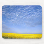 Na, USA, ID, Grangeville, Field of Canola Crop Mouse Pad