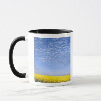 Na, USA, ID, Grangeville, Field of Canola Crop Mug