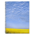 Na, USA, ID, Grangeville, Field of Canola Crop Spiral Notebooks