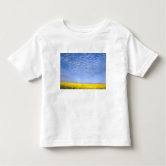 Na, USA, ID, Grangeville, Field of Canola Crop Toddler T-shirt