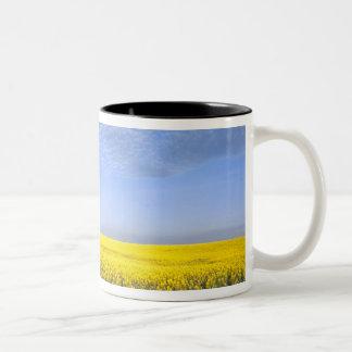 Na, USA, ID, Grangeville, Field of Canola Crop Two-Tone Coffee Mug