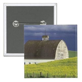 NA, USA, Idaho, south of Genesse, Canola field Pinback Button