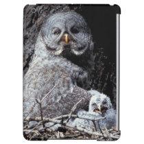 NA, USA, Idaho, Teton Valley. Great gray owl iPad Air Cases
