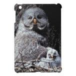NA, USA, Idaho, Teton Valley. Great gray owl iPad Mini Covers