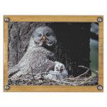 NA, USA, Idaho, Teton Valley. Great gray owl Rectangular Cheeseboard