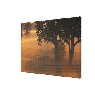 NA, USA, Kentucky. Foggy sunrise on Kentucky Canvas Print
