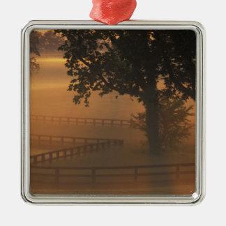 NA, USA, Kentucky. Foggy sunrise on Kentucky Christmas Tree Ornaments
