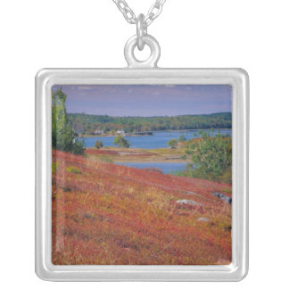 NA, USA, Maine. Blueberry Barrens. Silver Plated Necklace