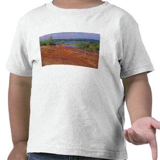 NA, USA, Maine. Blueberry Barrens. T-shirts