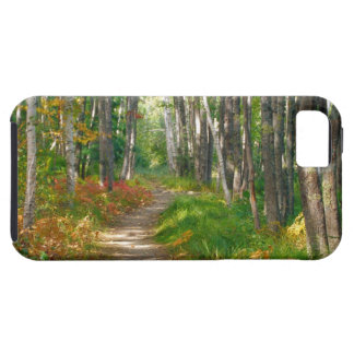 NA, USA, Maine.  Jessup trail in Acadia National iPhone 5 Case